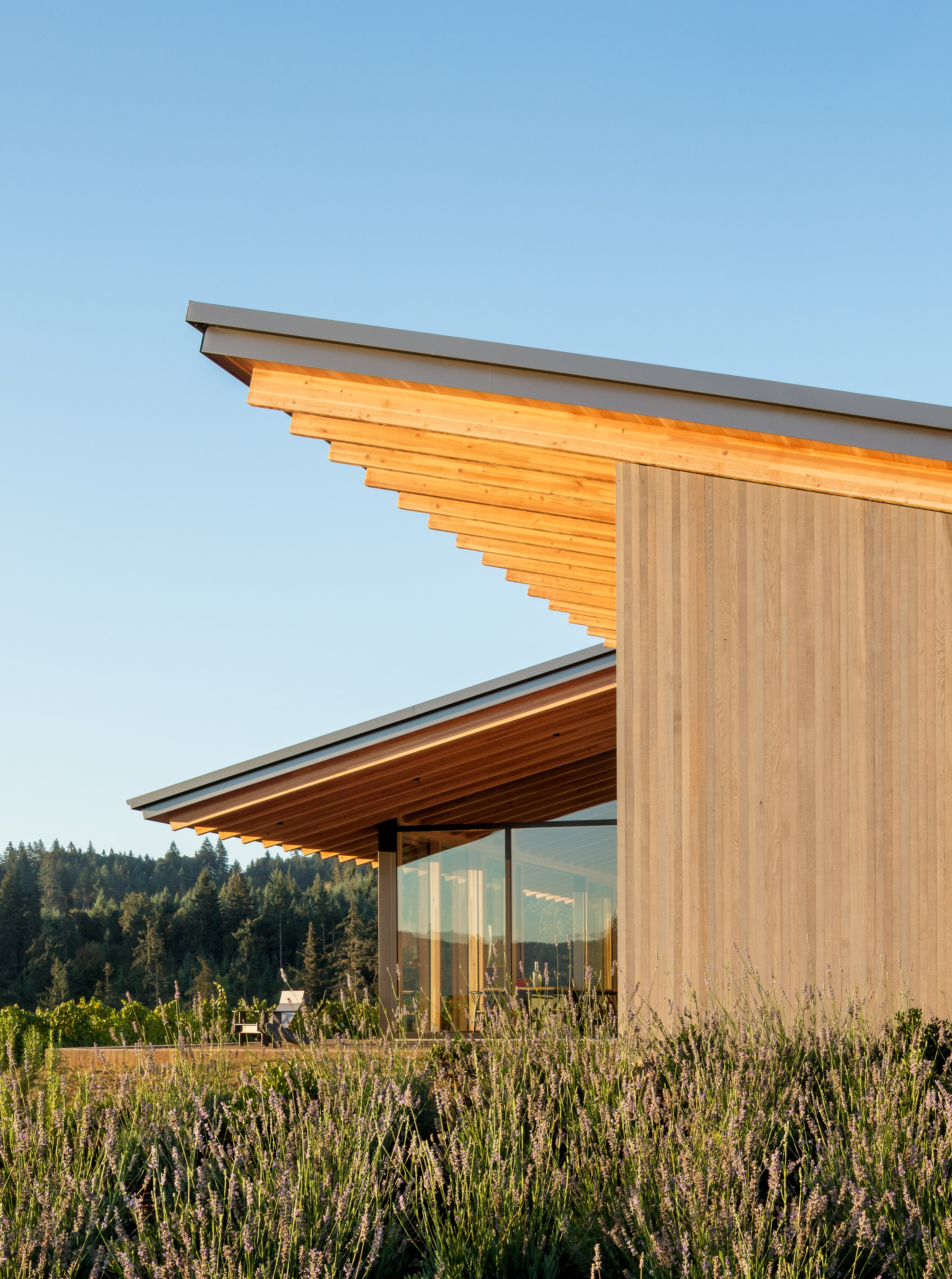 Lever Architecture designs Stunning Wine Tasting Room in Oregon lever architecture Lever Architecture designs Stunning Wine Tasting Room in Oregon Lever Architecture designs Stunning Wine Tasting Room in Oregon 3