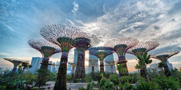 Singapore Design Guide singapore design guide Singapore Design Guide singapore architecture 19 585x293