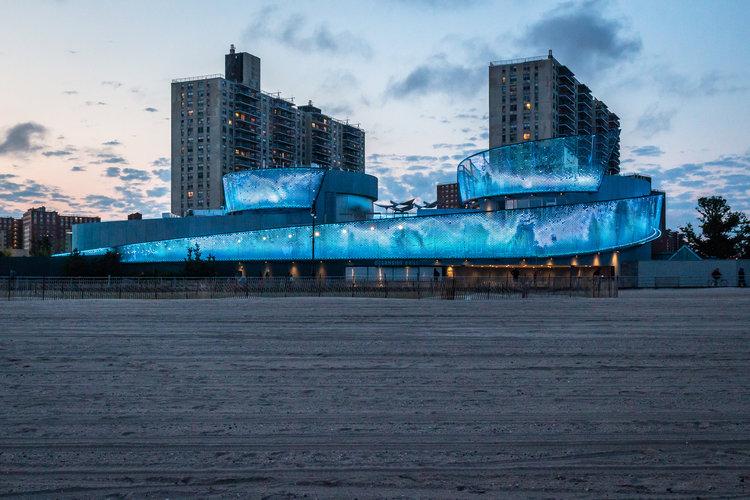 nycxdesign awards 2019: all the winners NYCXDESIGN AWARDS 2019: ALL THE WINNERS NYAquariumSharkExhibit RyanFischer