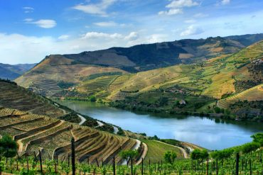 douro design guide Douro Design Guide: TOP Places Douro Design Guide TOP Places 5 370x247