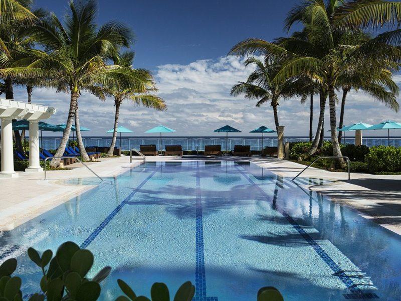 palm beach design guide Palm Beach Design Guide palm beach design guide 6 800x600
